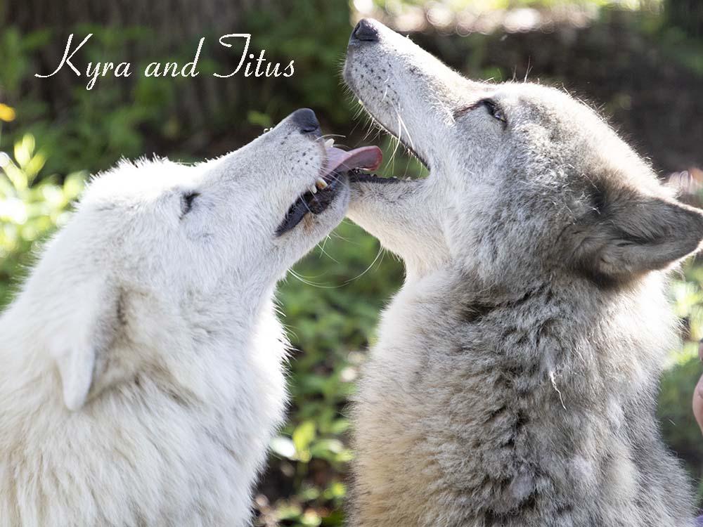 Kyra and Titus