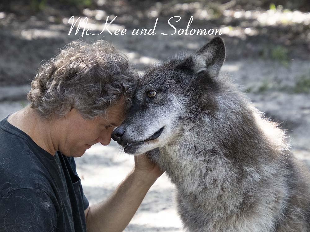 Solomon and Mckee