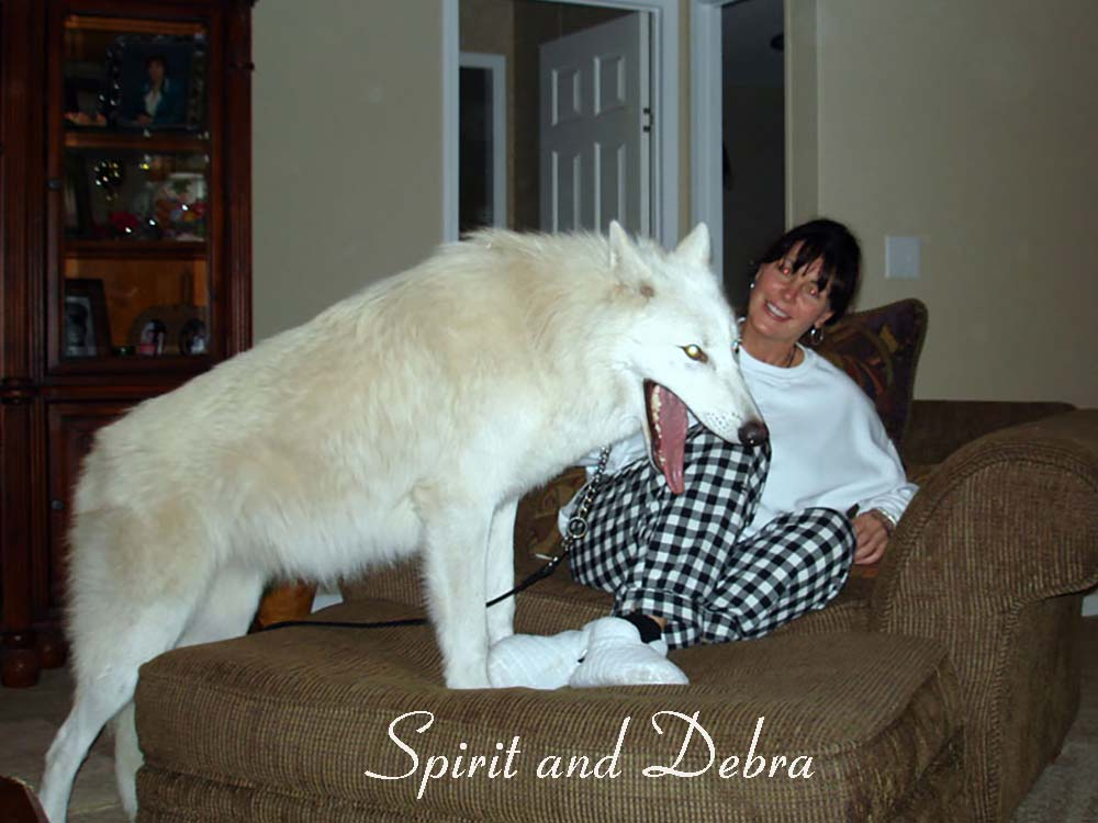 Spirit and Deb